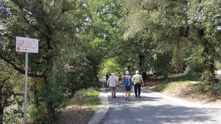Cammino-della-Luce-Italia----Viaje-Comigo